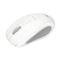 Intopic BL-560 White Blue-LED - Wireless Optical Mouse
