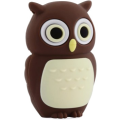 USB 8GB Bone Owl